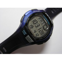 Zegarek męski Casio WS-2000H-2AVEF